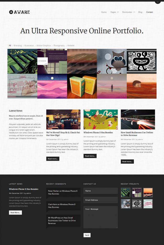 screenshoot Aware_WP-Theme